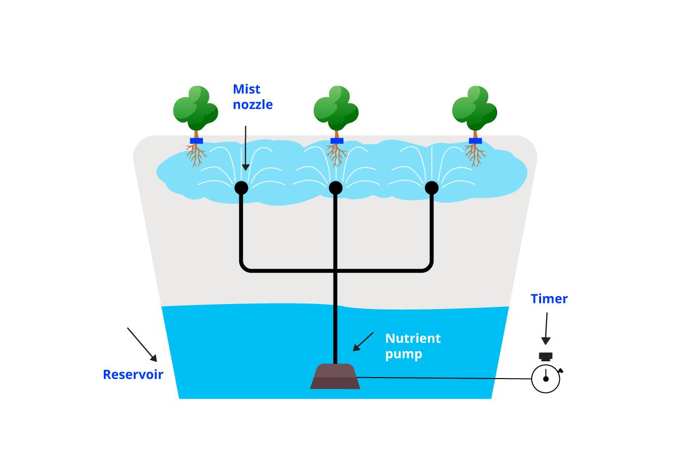Aeroponics-System