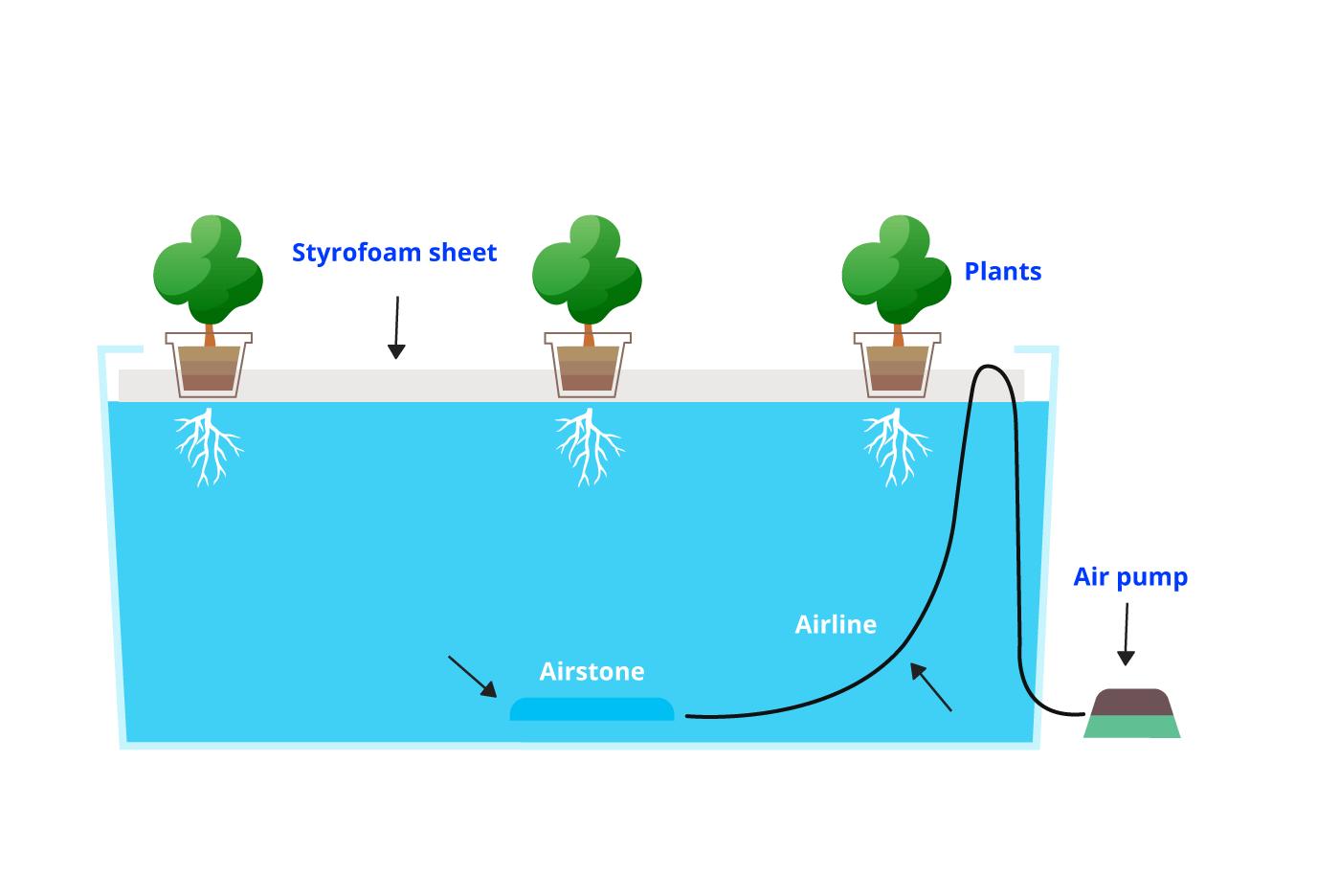 DWC-System