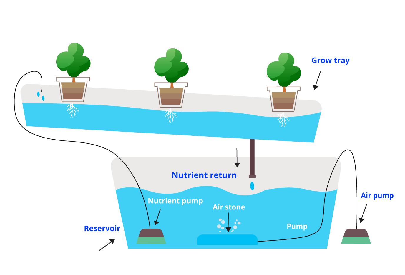 NFT-System