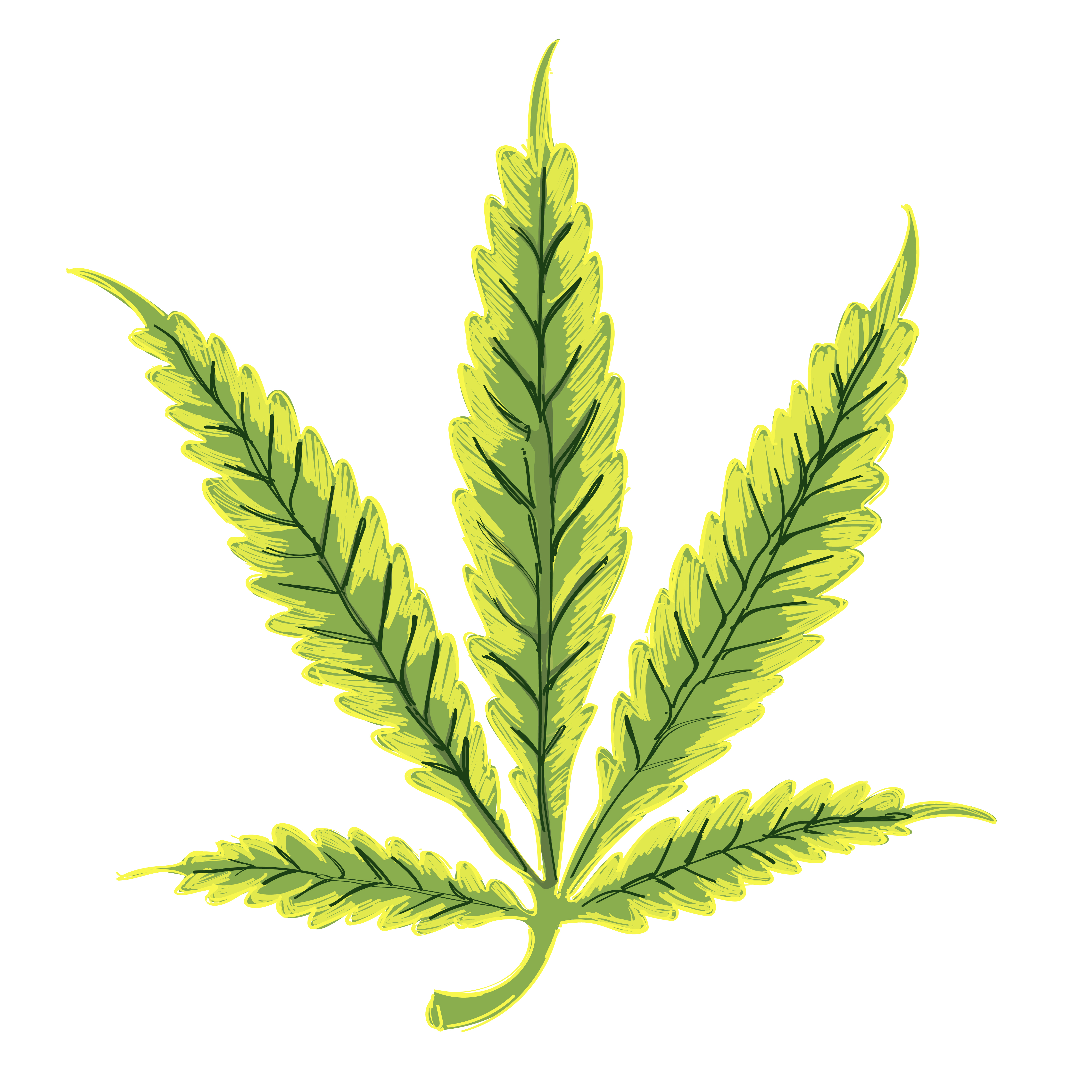 Yellowing leaves is a symptom of a nitrogen deficiency
