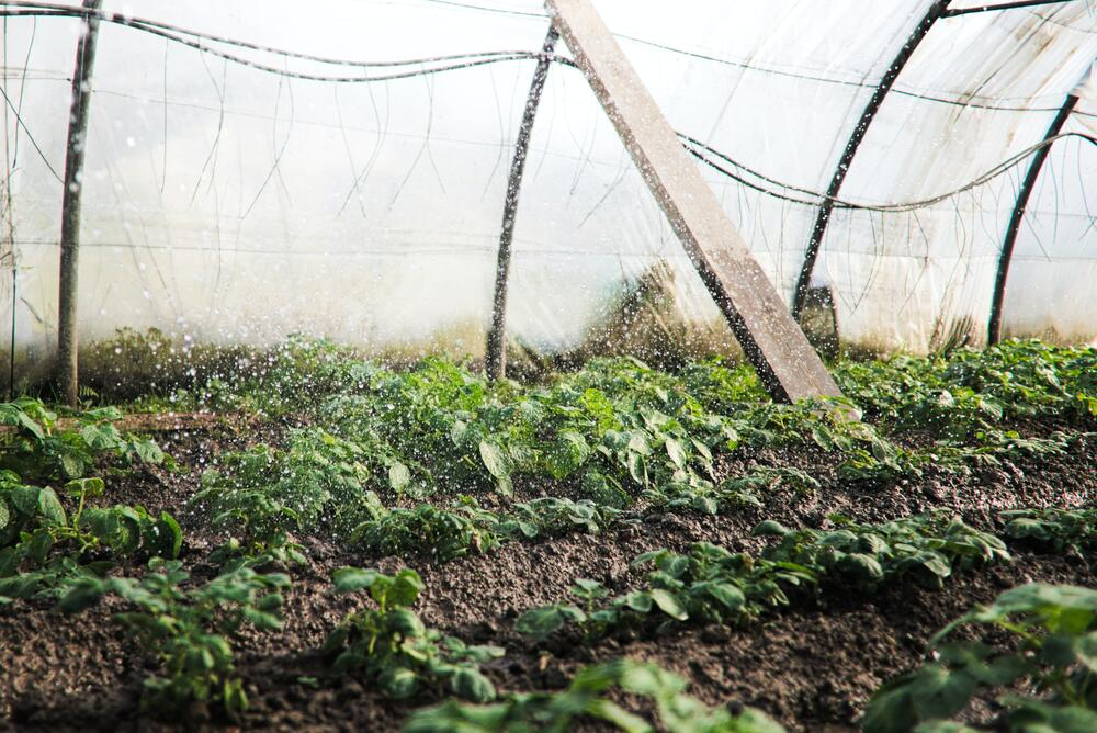 Water quality in greenhouses