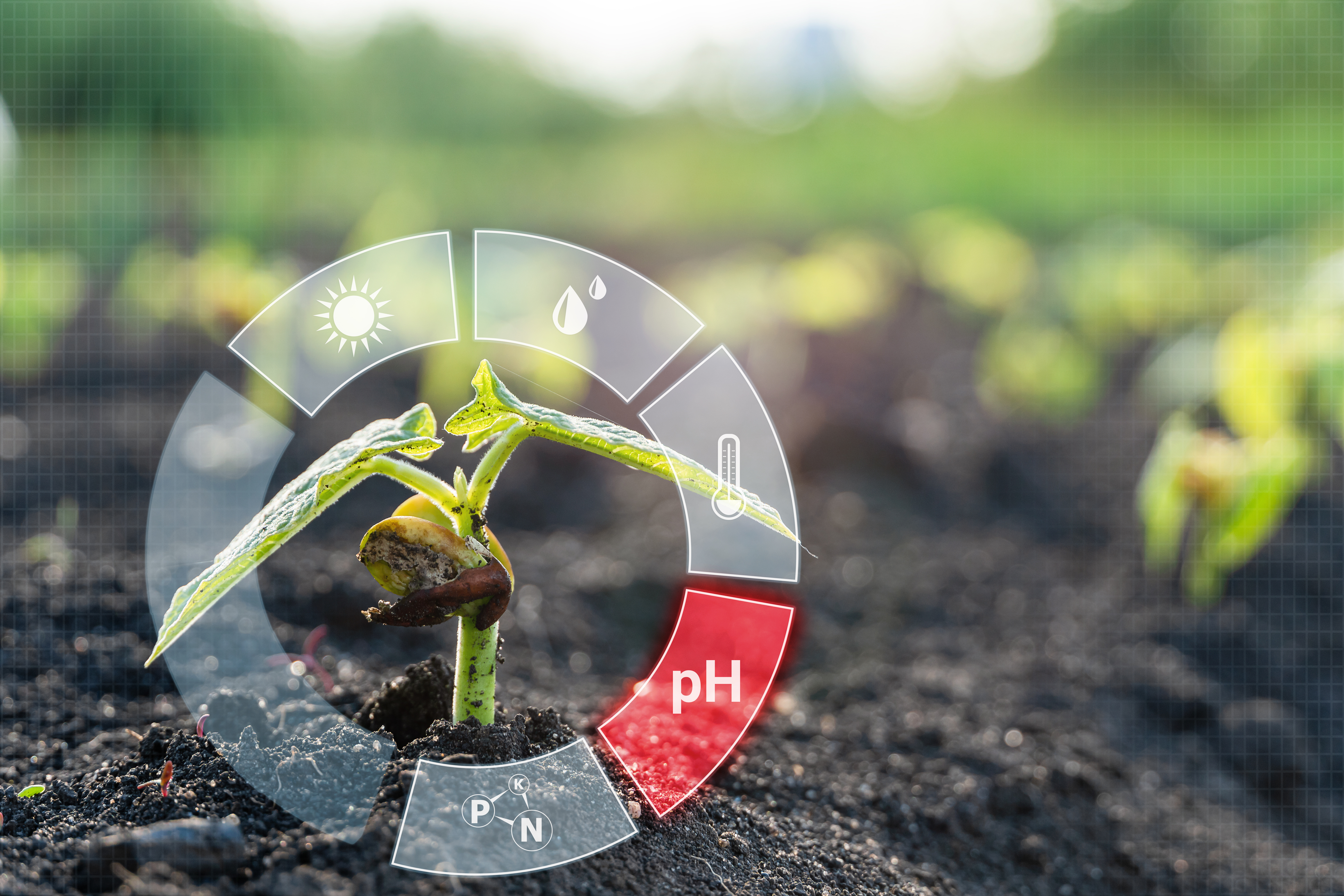 pH is a fundamental parameter of growing